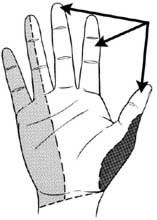 Illustration: arrow pointing to the thumb, index and middle finger